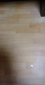 床掃除後の写真