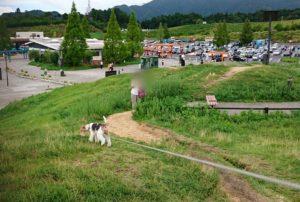土山サービスエリアの写真