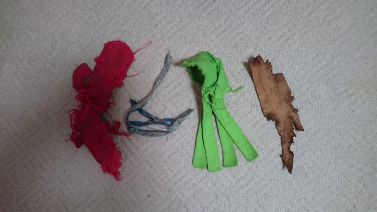 フーちゃんが壊したおもちゃの写真