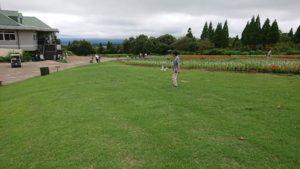 草を短く刈り込んだ広場の写真